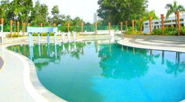 Swimming pool and Kids pool